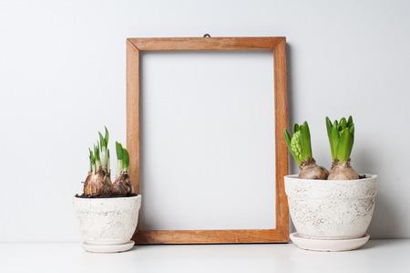 Hyacinth en narcissen spruiten in keramische potten en lege houten frame op een witte muur