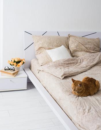 cama: Brillante interior del dormitorio blanco, gato que se sienta en una cama con ropa de color beige, flores en una mesita de noche, primer plano Foto de archivo