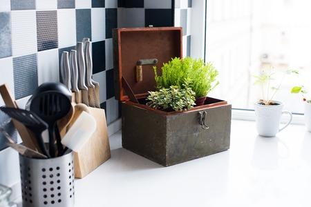 windowsill: Kitchen utensils, decor and kitchenware in the modern kitchen interior close-up. Home plants on a windowsill.