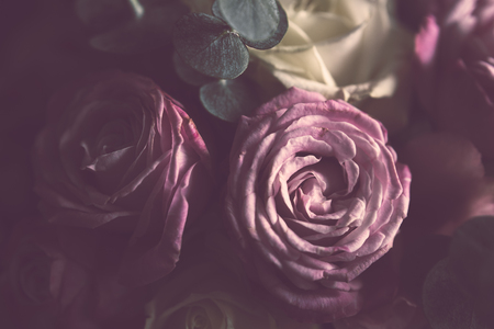 Elegant bouquet of pink and white roses on a dark background, soft focus, close-up. Romantic hipster background. Vintage filter. Stock Photo