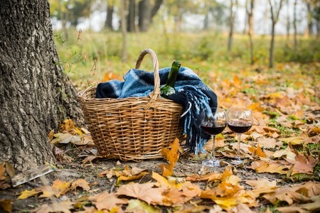 picnic food: Basket with a blanket, wine and glasses on yellow autumn leaves. A cozy autumn picnic in the park, a warm autumn day. Stock Photo