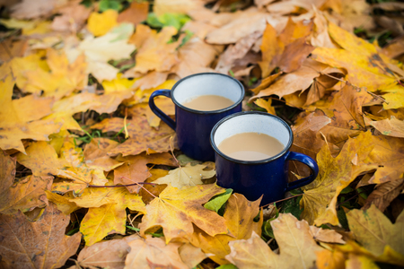 warm drink: Two enamel mugs of hot coffee in the park on yellow autumn leaves. Stock Photo