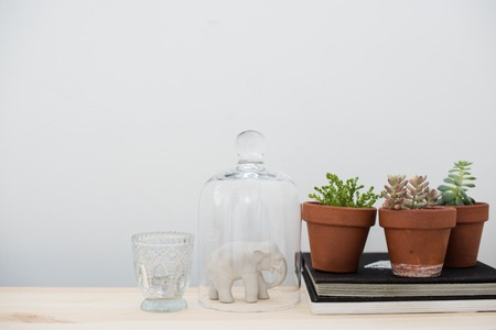 decorative objects: Stylish home interior decor, vintage style: old books, green plants and decorative objects on a table by the white wall.