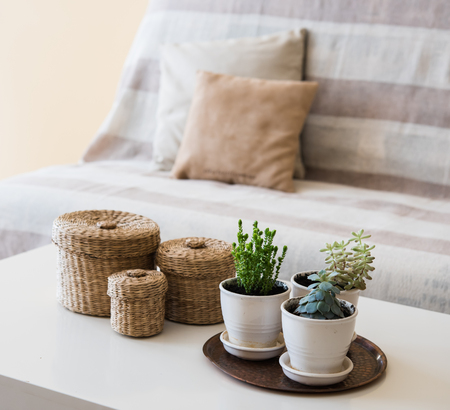 Cozy vintage home decoration: green plants and decorative wicker boxes on a table by the sofa with pillows, living room interior. Stock Photo