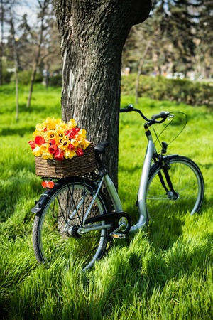 decorated bike: City bicycle with a bouquet of flowers in a basket standing in the grass in the spring park