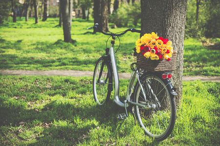 decorated bike: City bicycle with a bouquet of flowers in a basket standing under the tree in the spring park
