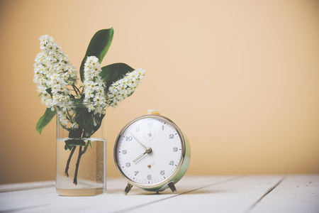wall decoration: Flowering branch of bird cherry in a glass of water and alarm clock on a table Stock Photo