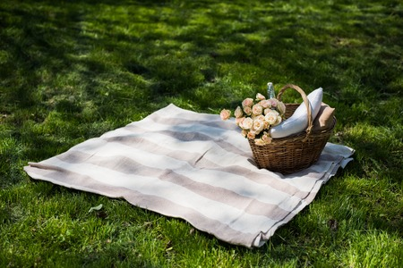 blanket: Spring picnic in a park, wicker basket with flowers and pillows on the fresh green grass, relaxing on vacation