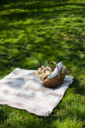 picnic blanket: Spring picnic in a park, wicker basket with flowers and pillows on the fresh green grass, relaxing on vacation