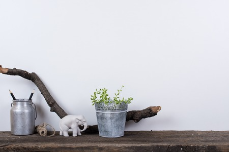 Scandinavian style home decor with plants on a rustic wooden board and white wall background. Foto de archivo