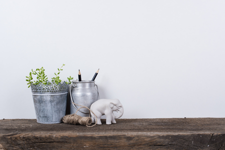 Scandinavian style home decor with plants on a rustic wooden board and white wall background. Reklamní fotografie