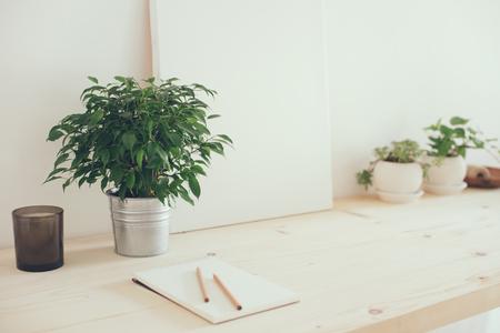소식통 아티스트의 작업 공간, 흰색 인테리어에 테이블에 식물과 캔버스