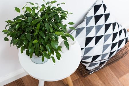 スカンジナビア ホーム インテリア デコレーション、シンプルな装飾オブジェクトおよび家具、シンプルな白い部屋 写真素材 - 63736437