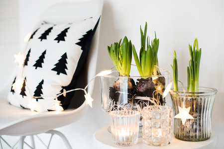 minimalist room decor 写真素材
