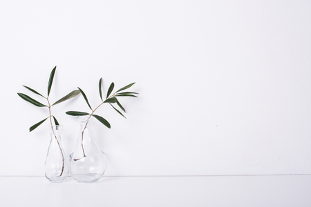 Two olive branches in glass bottles Stock Photo