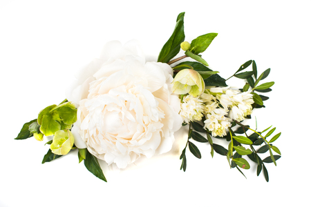 peony flowers arrangement on white background isolated. Festive Stock Photo