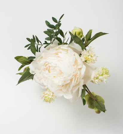 peony flowers on white background closeup