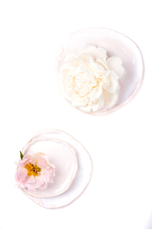peony flower in plate on white background isolated Stock Photo