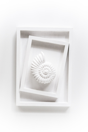 White sea shell in two frames on a white background, abstract ar Banco de Imagens - 91469699