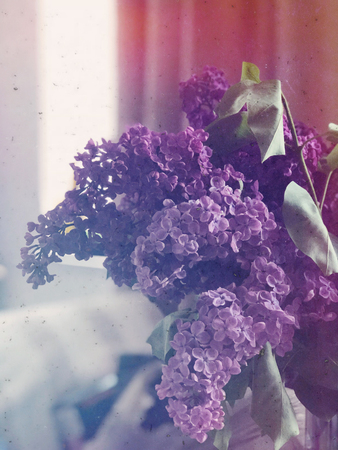 Violet lilac branches with flowers at home interior closeup Stock Photo - 100931464