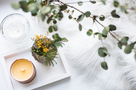 Interior tray decoration with burning candle, mimosa flowers and branches Stock Photo