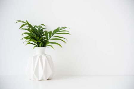 Bouquet of green palm leaves in white ceramic vase on table