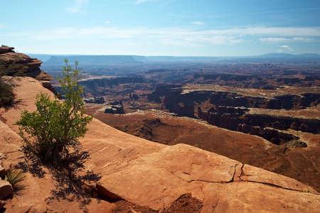 waterless: Red Desert, Canyonlands National Park, Utah, USA Stock Photo