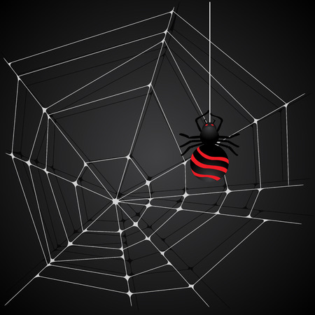 spider web background: Spider web background illustration.