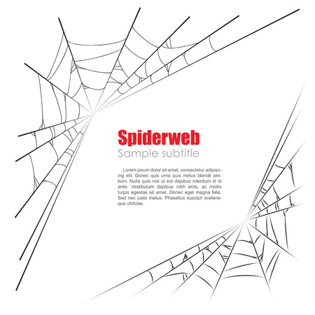 spider web: Spider web vector illustration on white background