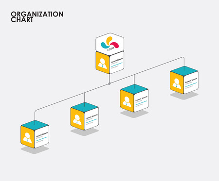 Organization chart infographics with tree, Diagram flow.  vector illustration.