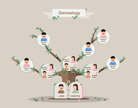 g�n�alogie: L'arbre g�n�alogique. Arbre g�n�alogique dans flatdesign. mod�le de Pedigree. dessin vectoriel.