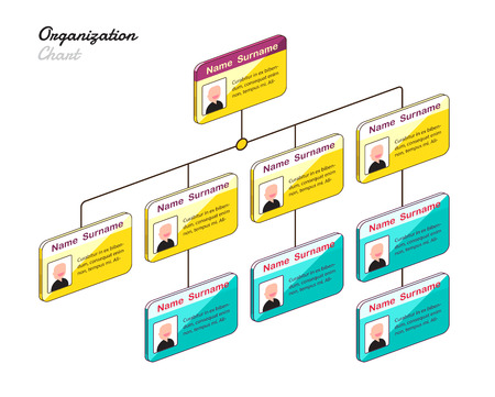 organization chart: Organization chart infographics with tree. vector illustration