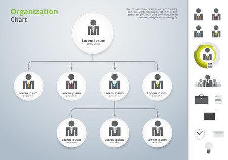 the structures: Vector modern and simple organization chart template. vector illustration.