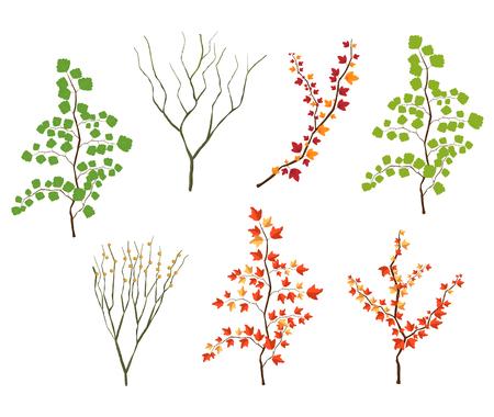 Leaf Illustration Objekt . Vektor EPS10 Standard-Bild - 93937717