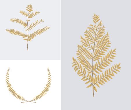Leaf Illustration Standard-Bild - 93981155