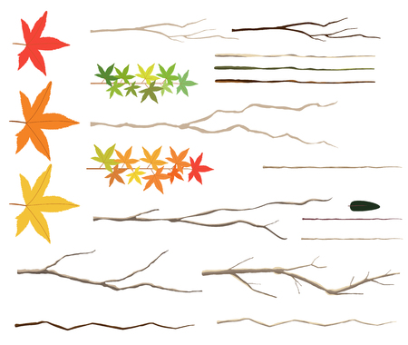 Leaves and twigs set
