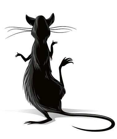rat: black rat isolated on white background vector illustration