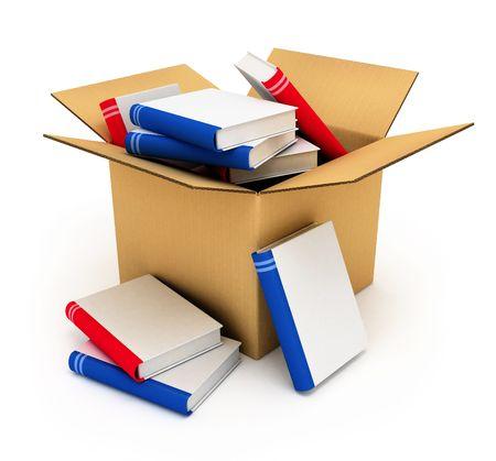 caja de cartón llena de libros en blanco cubre con aislados de alta calidad modelo 3D ilustración  Foto de archivo - 2044661
