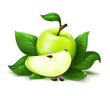 lobule: Apple with leafs vector illustration isolated over white background