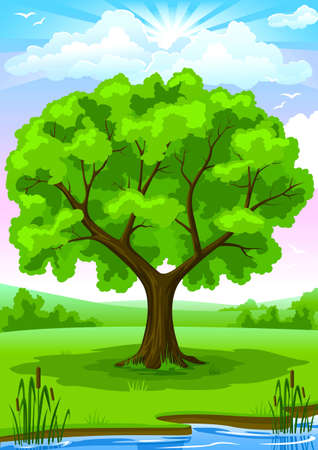 Summer landscape of green river coast with old oak tree and blu sunny sky vector illustration