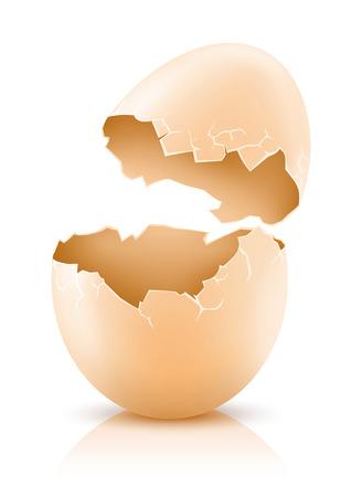 fissurée ?uf de poule isolé sur blanc - illustration vectorielle Vecteurs