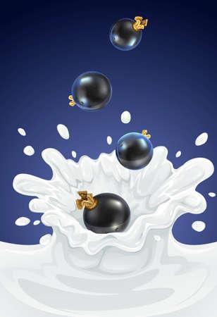 Beere schwarze Johannisbeere löschen in Molkerei Splash - Vektor-illustration