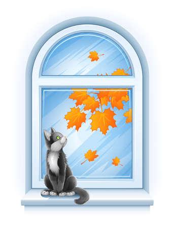 kitten sitting on windowsill of closed window with autumnal leaves photo