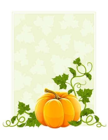 ripe orange pumpkin vegetable with green leaves Stock Photo - 7646125