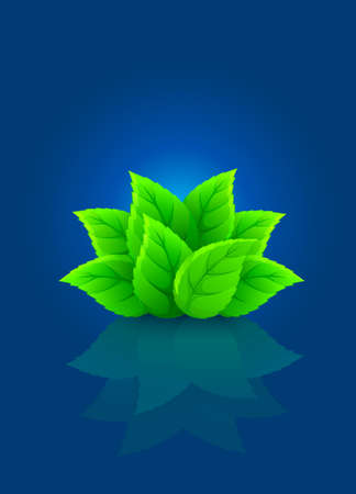 group of green leaf Stock Vector - 7646123