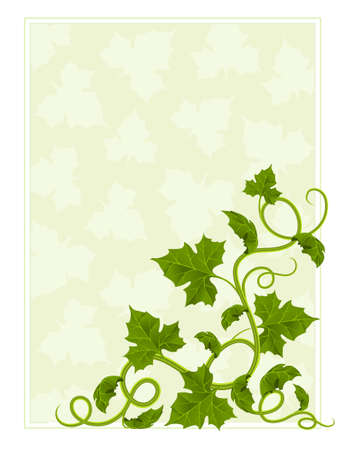 floral frame with willow and green leaf Vector