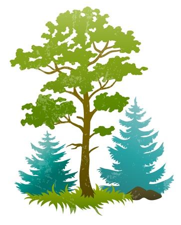 grunge silhouettes of forest tree and fir trees. Transparent objects used for shadows and lights drawing Illustration