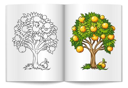 Arbre fruitier tirée du livre de bages l'illustration isolé sur fond blanc Banque d'images - 14841072
