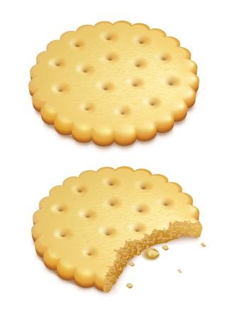 白い背景上に分離されて 2 つのサクサク クッキー  イラスト・ベクター素材