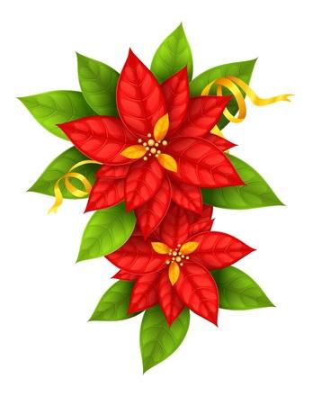 Red Christmas Star bloemen poinsettia met gouden lint geïsoleerd op witte achtergrond - vectorillustratie eps10
